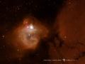 NGC1748